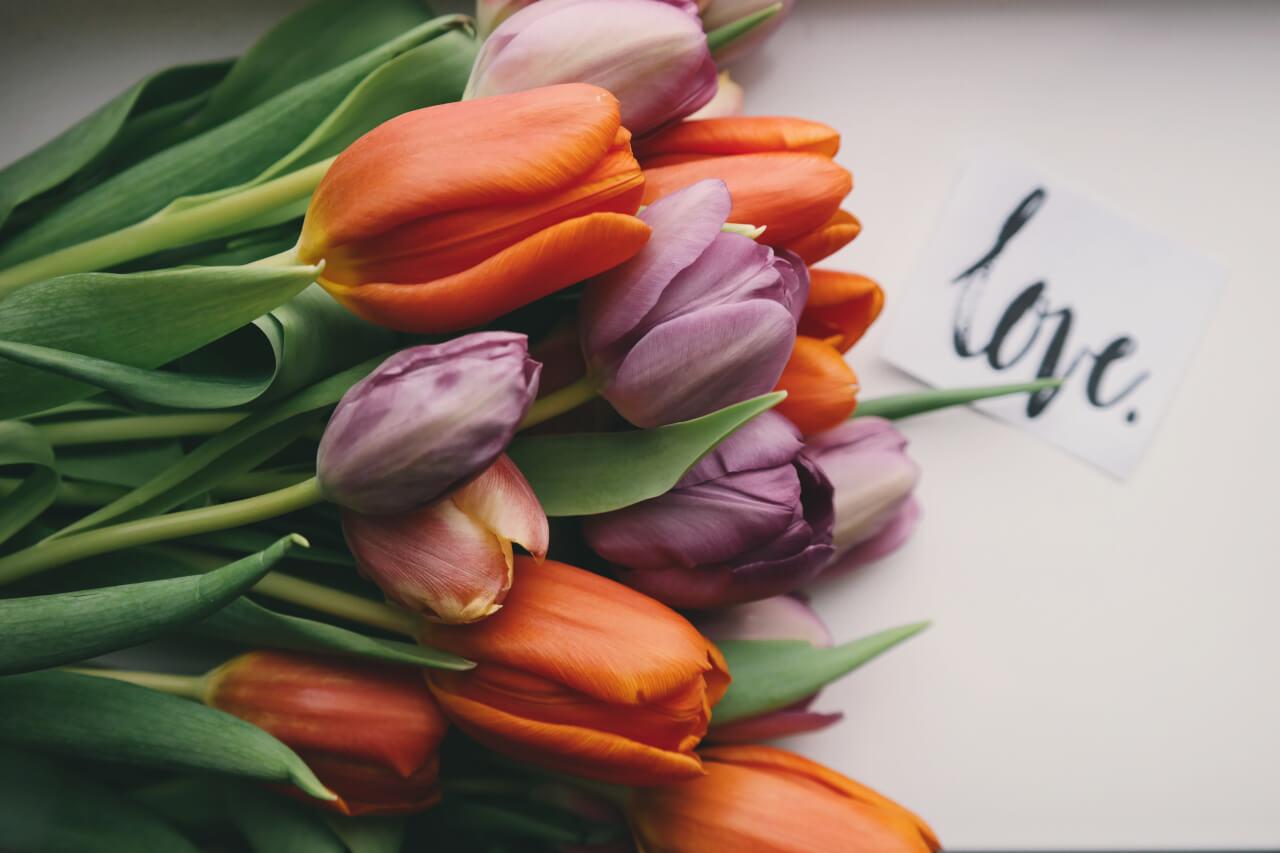 brigitte tohm 210081 - Sag es mit einem Geschenk oder Inspirationen für Verliebte