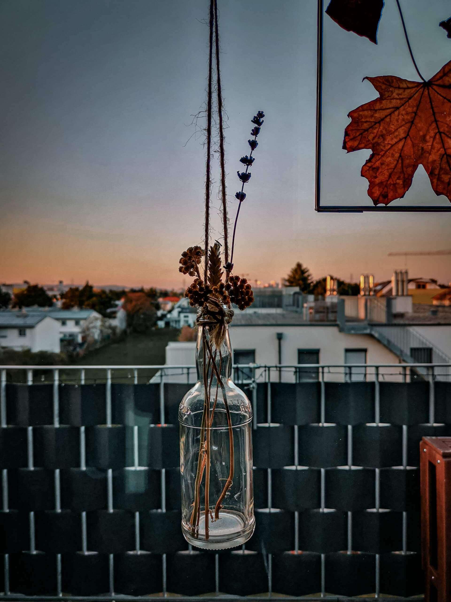 IMG 20200407 191532 2 scaled - Botanický windowstyling: Vymeňte záclony za okenný herbár