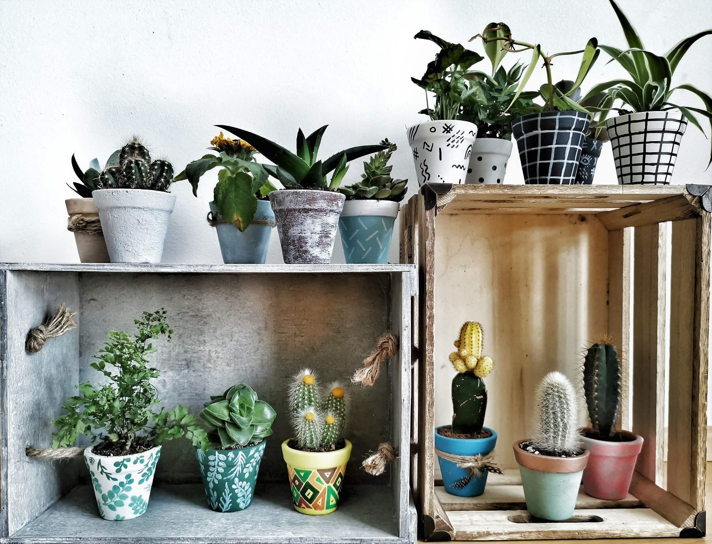 IMG 20190612 130221 1 01 resized 20190612 062905475 - Kreatives Recycling: Blumentöpfe in 5 verschiedenen Stilen