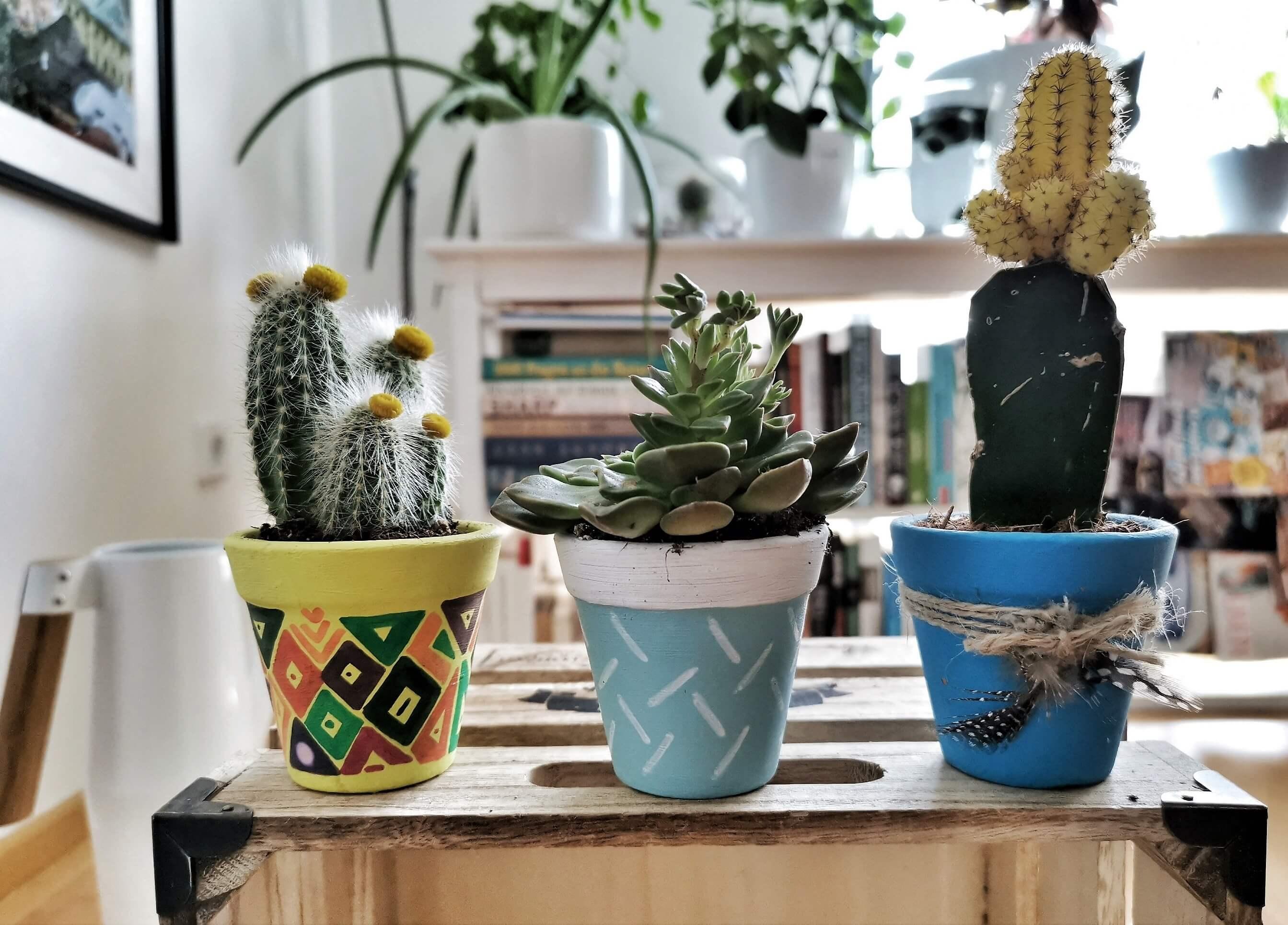 IMG 20190612 130740 01 resized 20190612 070653418 - Kreatives Recycling: Blumentöpfe in 5 verschiedenen Stilen