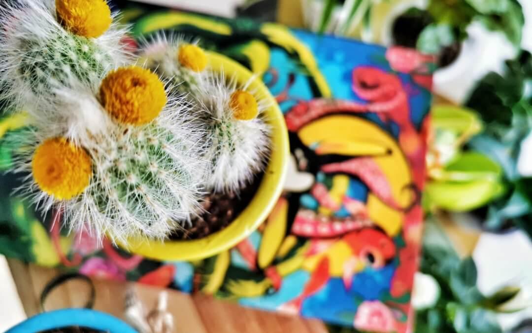 Recyklujeme kreatívne: Kvetináče v piatich rôznych štýloch