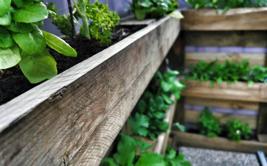 Zaostrené na palety: Ako si vyrobiť stojan na bylinky?