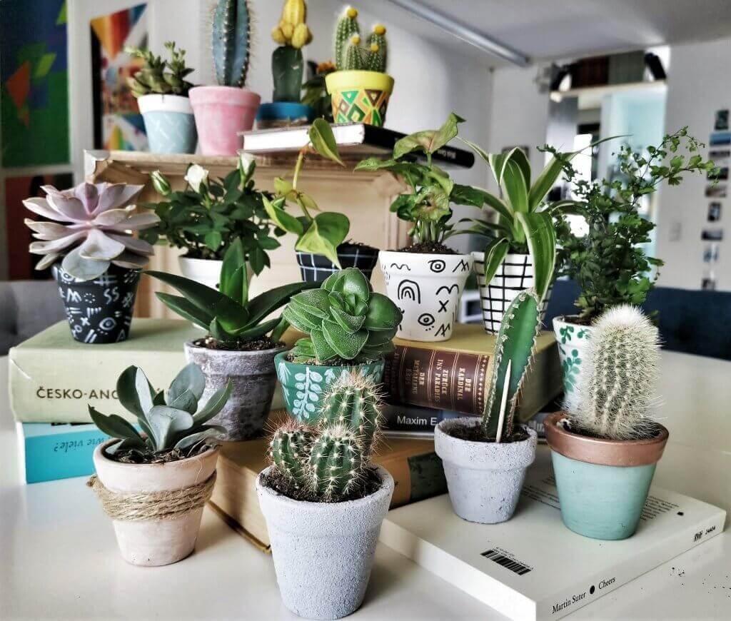 1 - Kreatives Recycling: Blumentöpfe in 5 verschiedenen Stilen