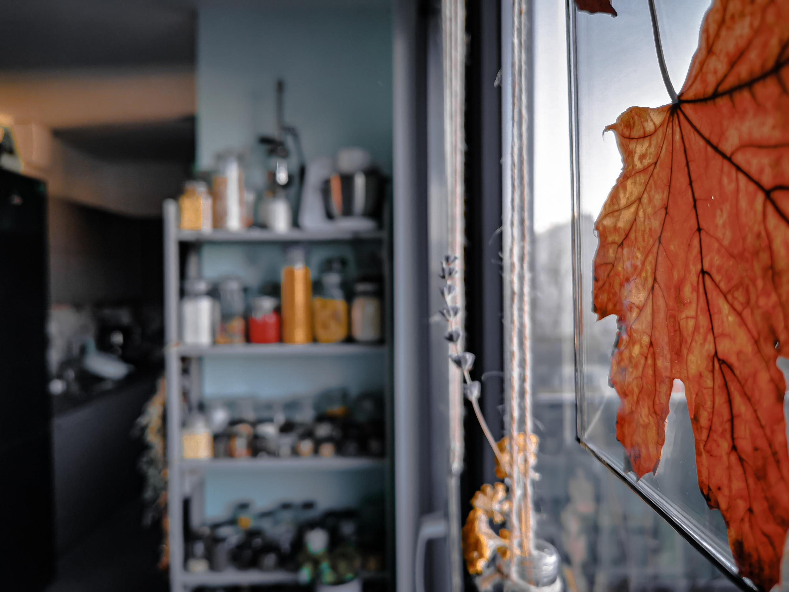 IMG 20200208 154402 resized 20200608 103427832 - Projekt Vorzimmer: 11 DIY-Ideen an einem Ort