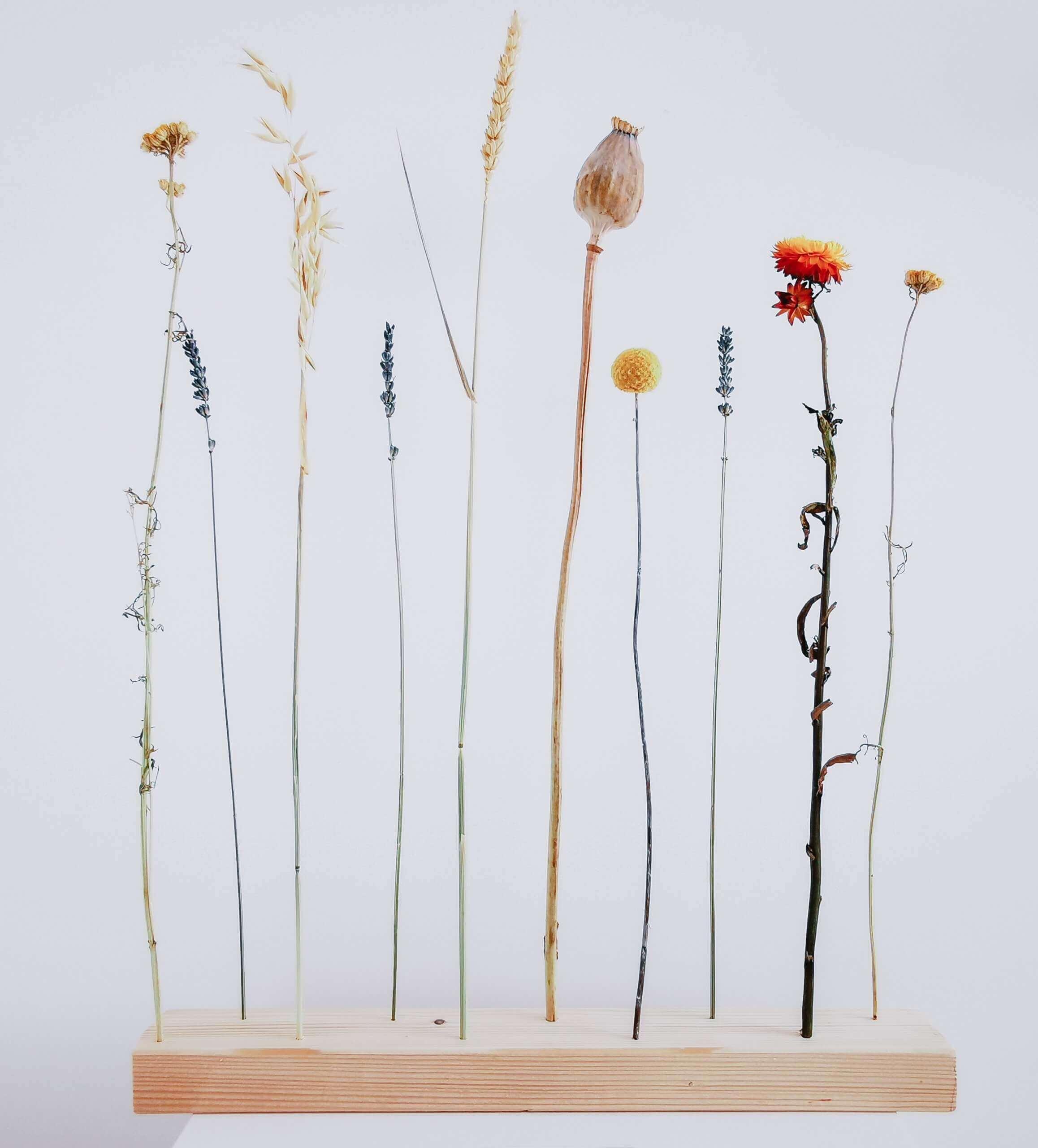 IMG 20200602 110643 01 scaled - DIY Blumendekoration zum Verlieben