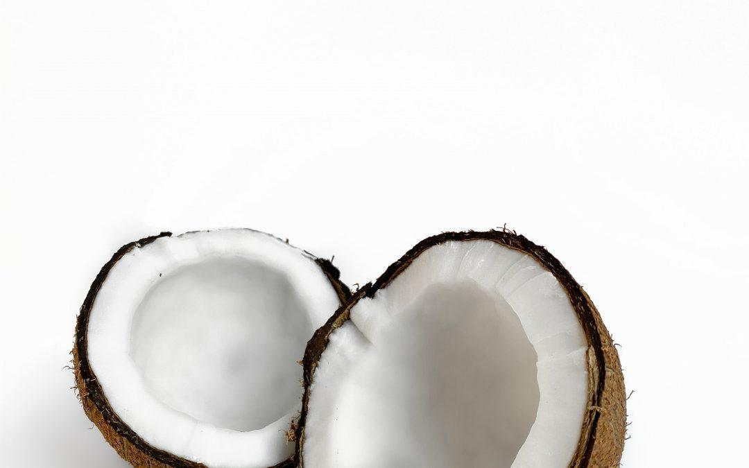 Frische Kokosmilch (und mehr) selbst gemacht