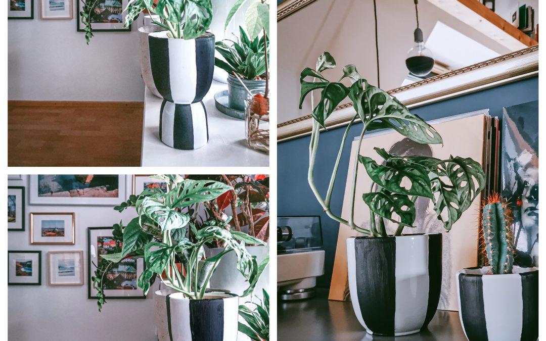 Dva v jednom a predsa trikrát inak! DIY multi-kvetináč